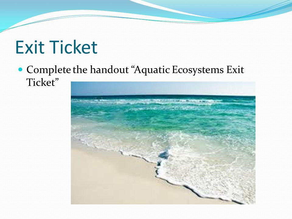 Exit Ticket Complete the handout Aquatic Ecosystems Exit Ticket