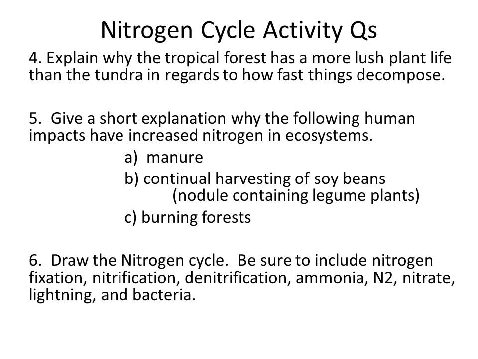Nitrogen Cycle Activity Qs