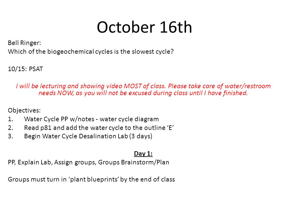 October 16th Bell Ringer:
