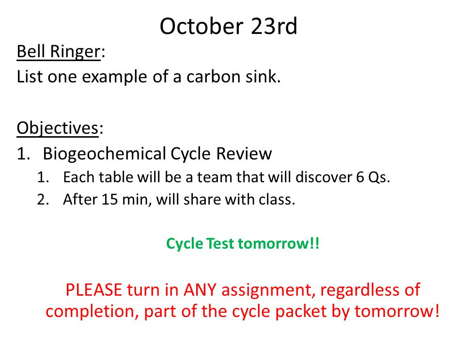 October 23rd Bell Ringer: List one example of a carbon sink.