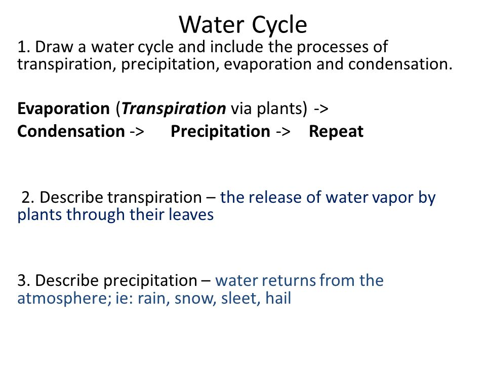 Water Cycle Evaporation (Transpiration via plants) ->