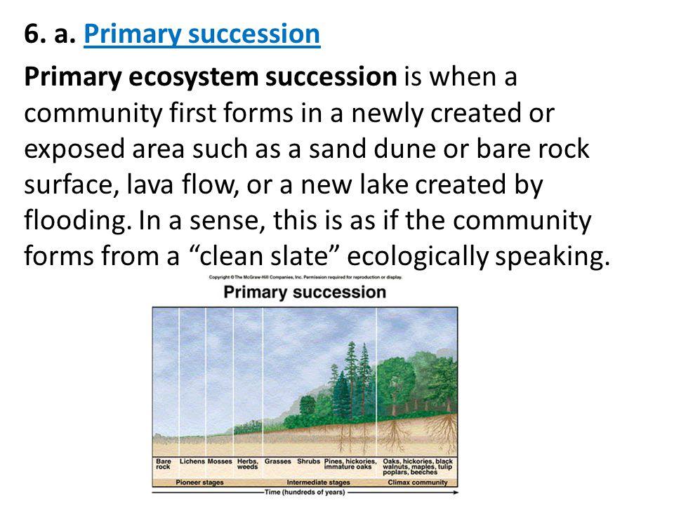 6. a. Primary succession