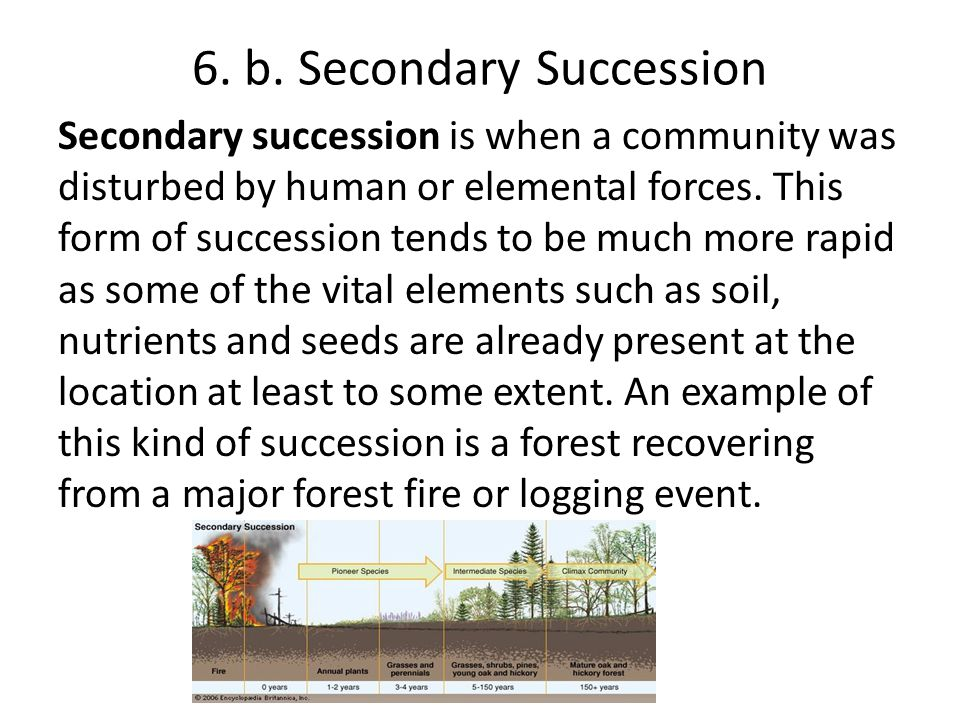 6. b. Secondary Succession