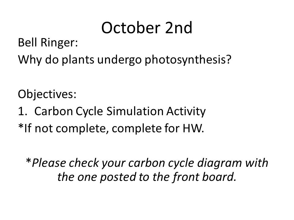 October 2nd Bell Ringer: Why do plants undergo photosynthesis