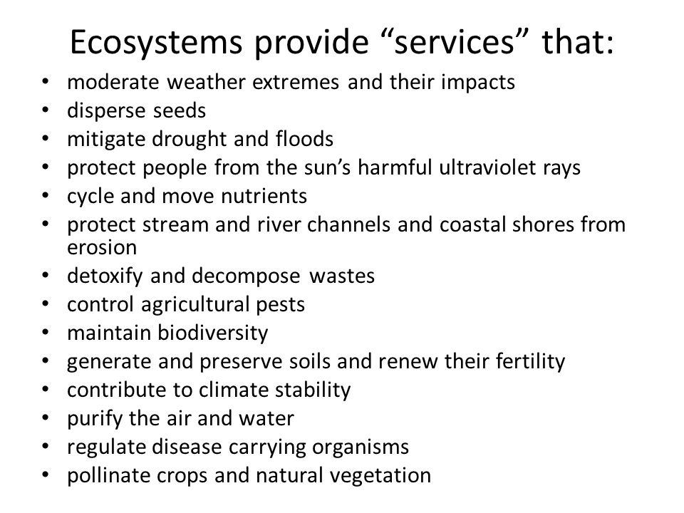 Ecosystems provide services that: