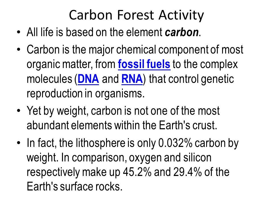 Carbon Forest Activity