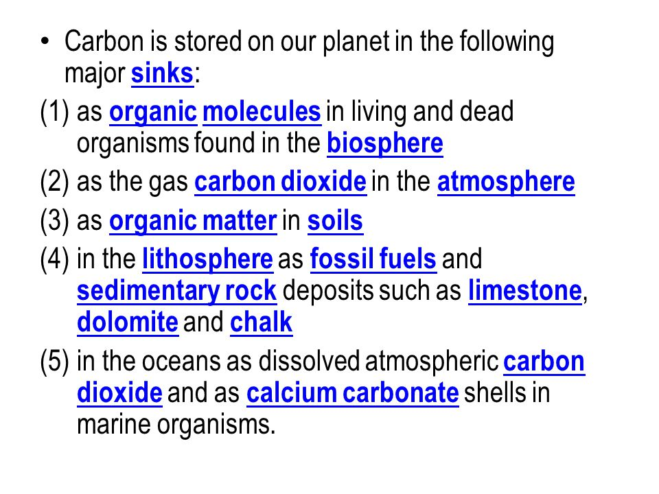 Carbon is stored on our planet in the following major sinks: