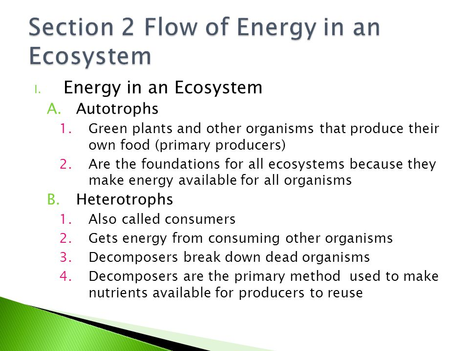 Section 2 Flow of Energy in an Ecosystem