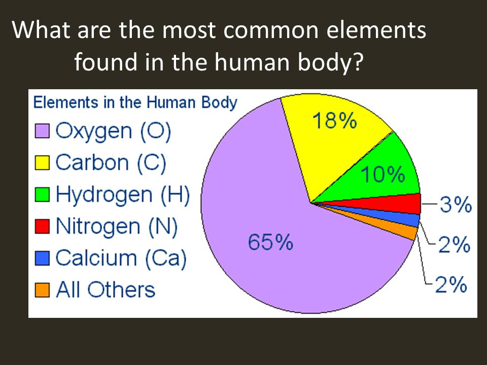 What are the most common elements found in the human body