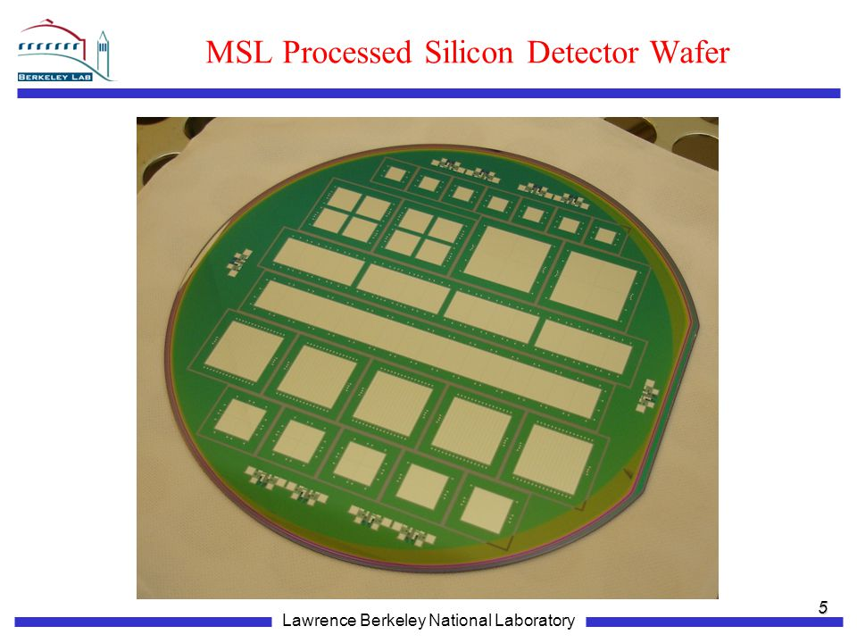 MSL Processed Silicon Detector Wafer