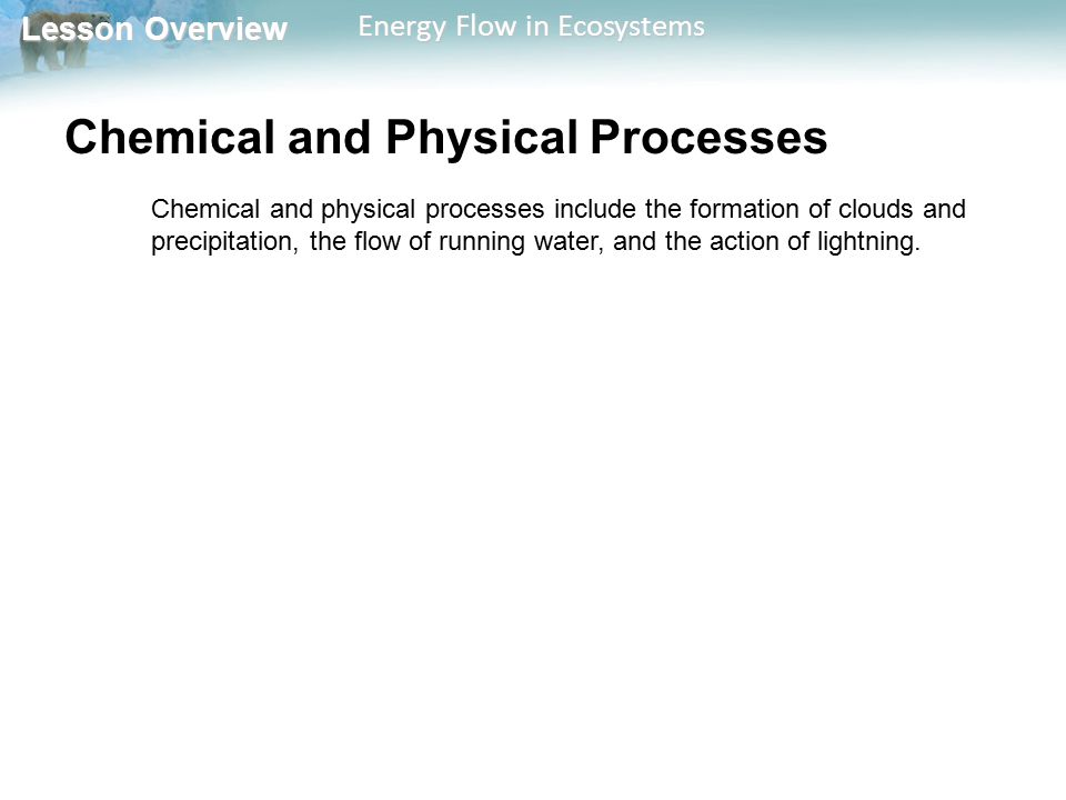 Chemical and Physical Processes