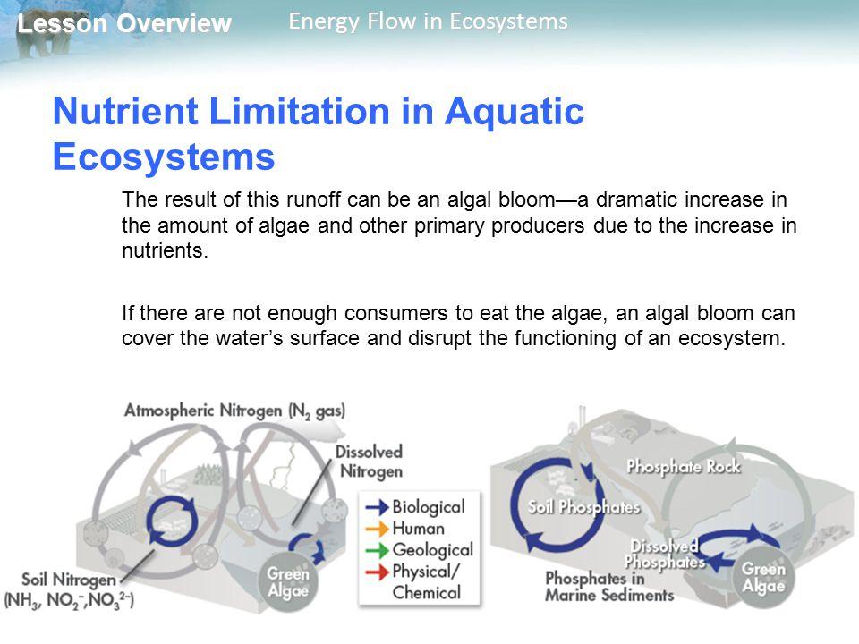 Nutrient Limitation in Aquatic Ecosystems