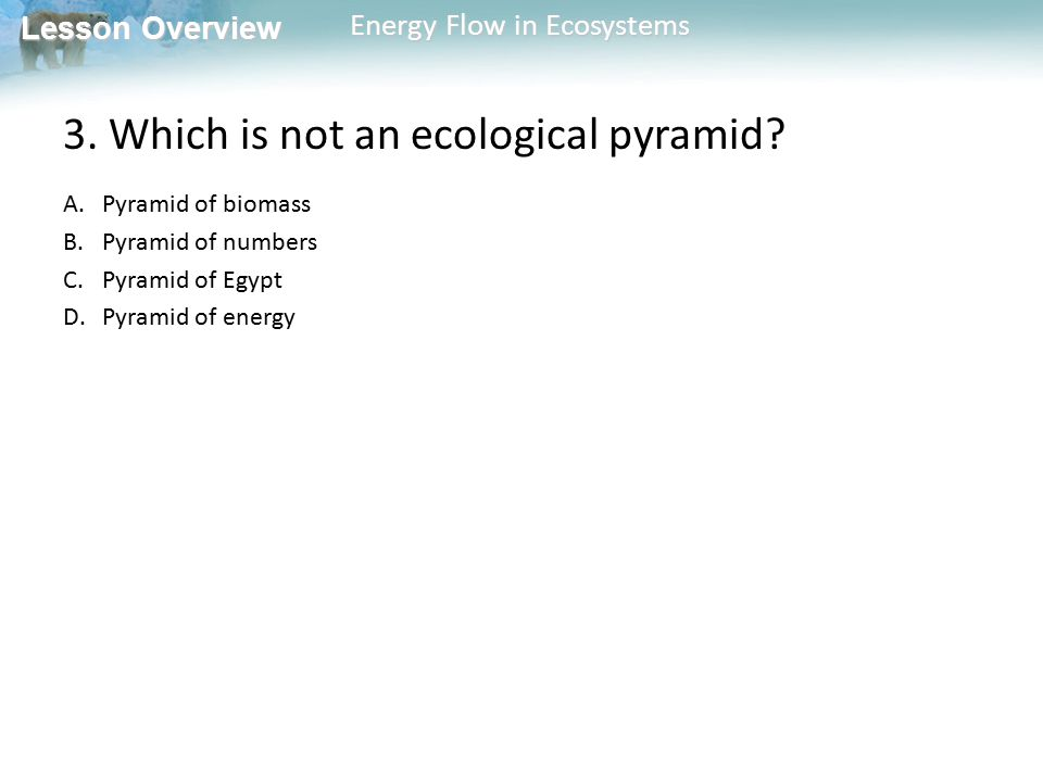 3. Which is not an ecological pyramid