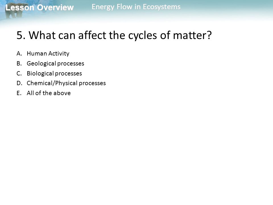 5. What can affect the cycles of matter