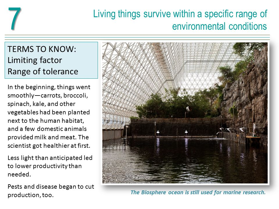 7 Living things survive within a specific range of environmental conditions. TERMS TO KNOW: Limiting factor.