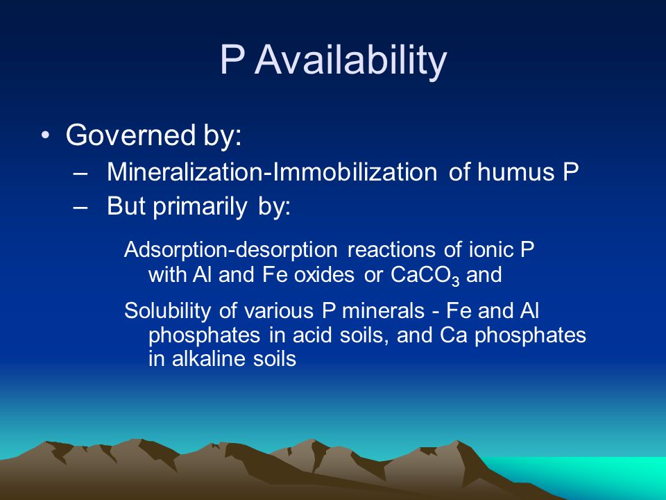 P Availability Governed by: Mineralization-Immobilization of humus P