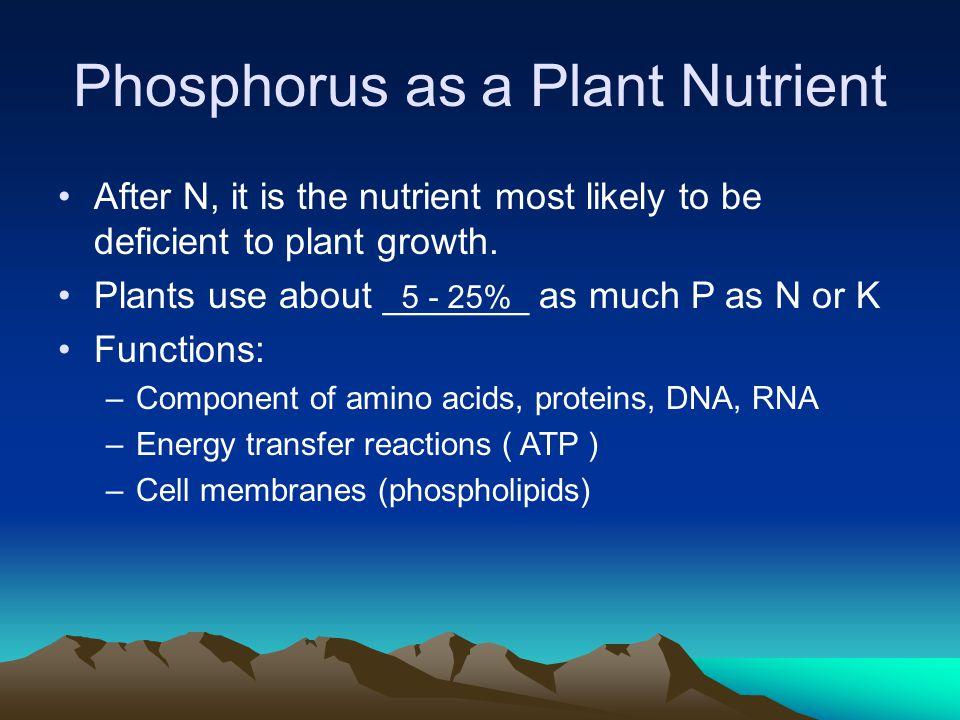 Phosphorus as a Plant Nutrient