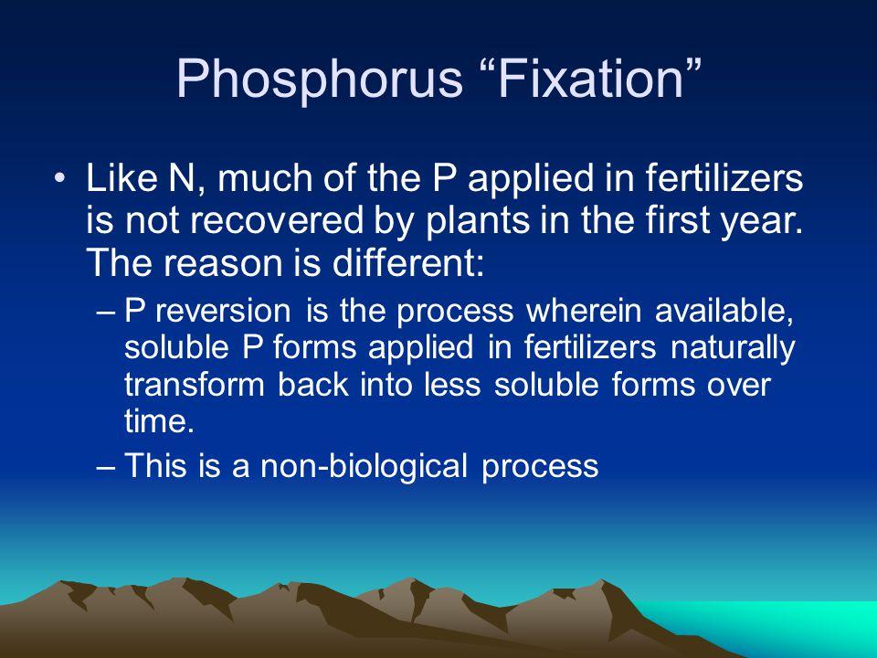 Phosphorus Fixation