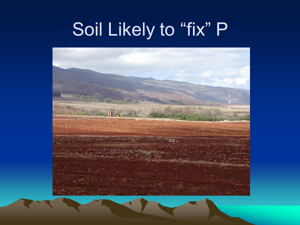 Soil Likely to fix P