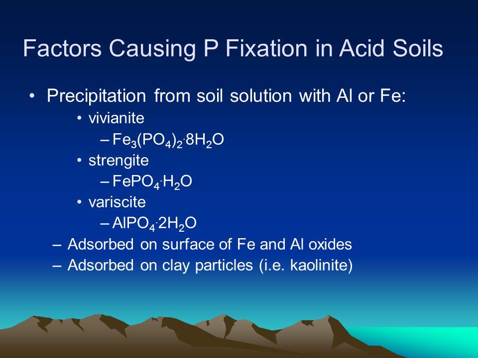 Factors Causing P Fixation in Acid Soils