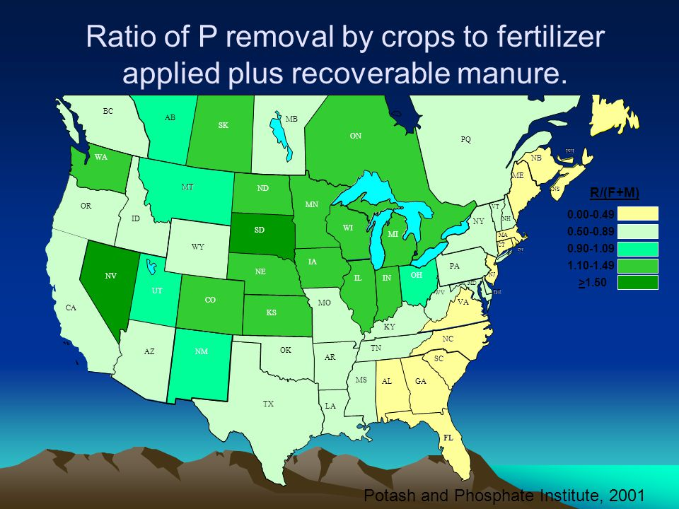 Ratio of P removal by crops to fertilizer applied plus recoverable manure.