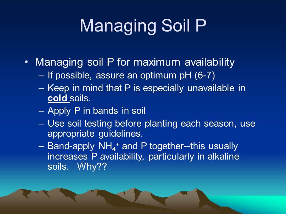 Managing Soil P Managing soil P for maximum availability