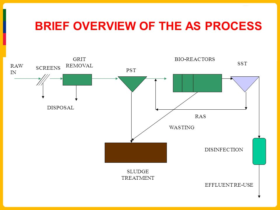 BRIEF OVERVIEW OF THE AS PROCESS