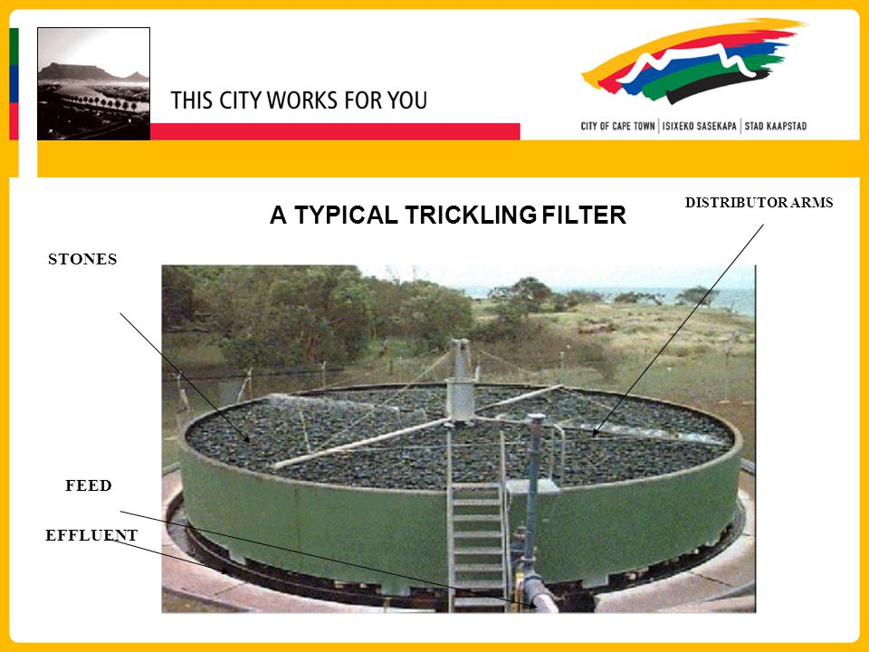 A TYPICAL TRICKLING FILTER