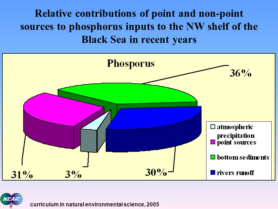 Relative contributions of point and non-point sources to phosphorus inputs to the NW shelf of the Black Sea in recent years