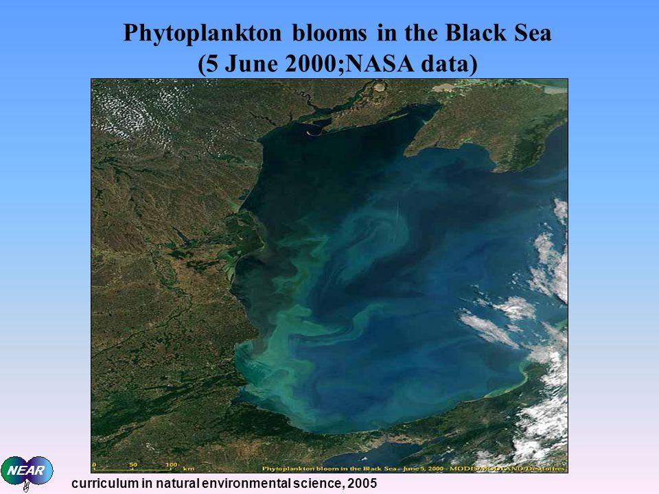 Phytoplankton blooms in the Black Sea (5 June 2000;NASA data)