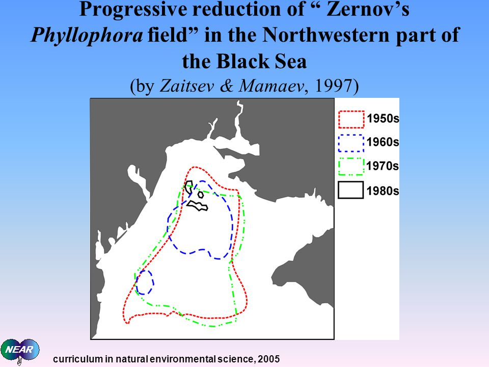 Progressive reduction of Zernov's Phyllophora field in the Northwestern part of the Black Sea (by Zaitsev & Mamaev, 1997)