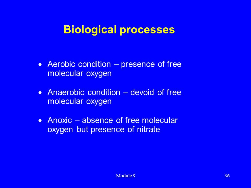 Biological processes Aerobic condition – presence of free molecular oxygen. Anaerobic condition – devoid of free molecular oxygen.