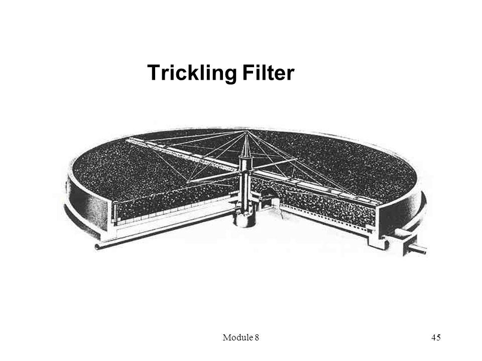 Trickling Filter Module 8