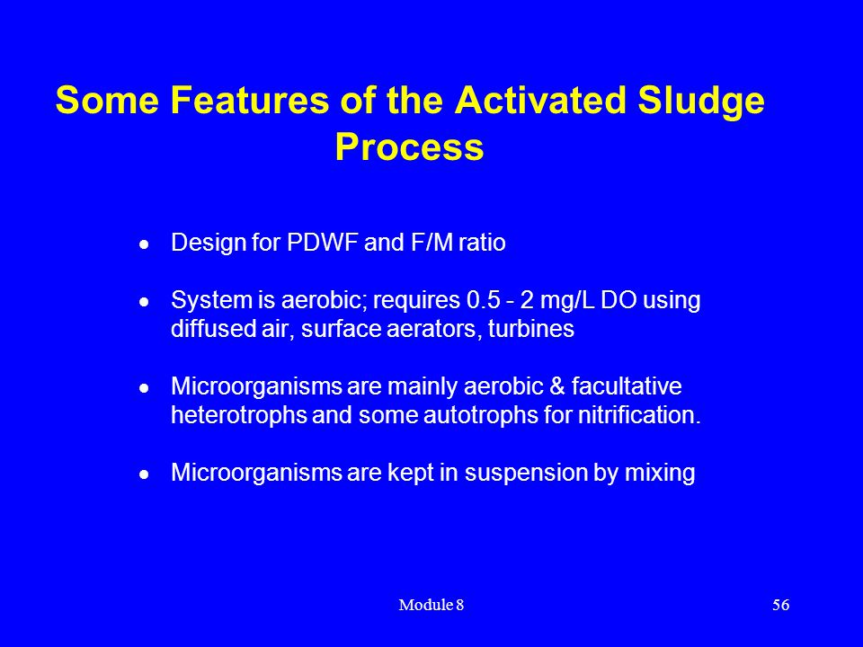 Some Features of the Activated Sludge Process