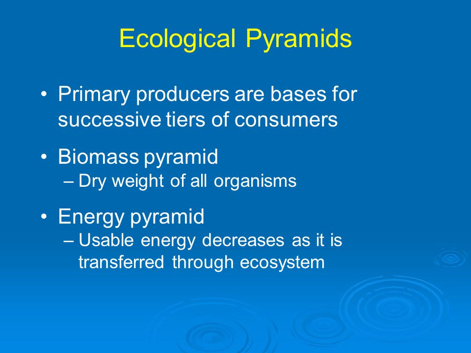 Ecological Pyramids Primary producers are bases for successive tiers of consumers. Biomass pyramid.