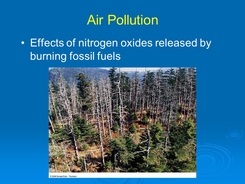 Air Pollution Effects of nitrogen oxides released by burning fossil fuels