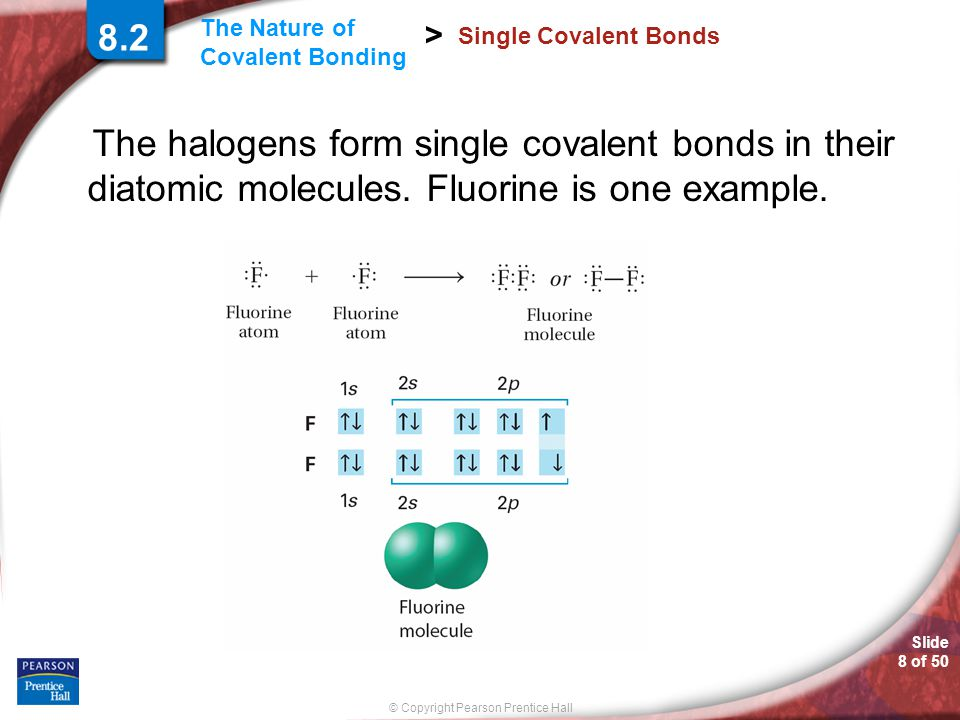 8.2 Single Covalent Bonds. The halogens form single covalent bonds in their diatomic molecules.