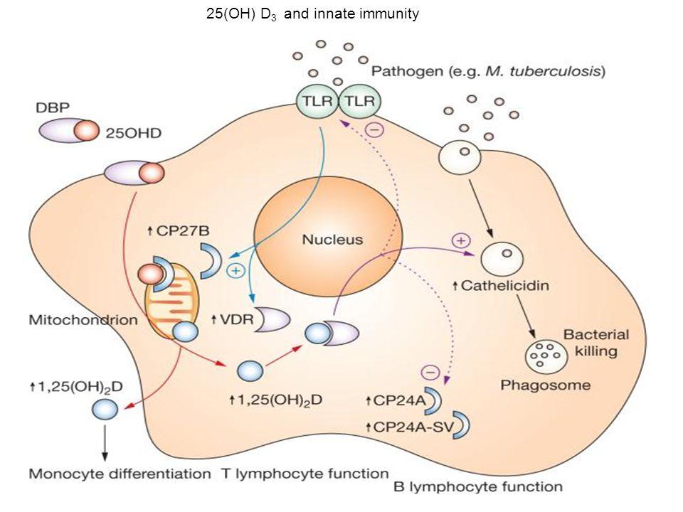25(OH) D3 and innate immunity