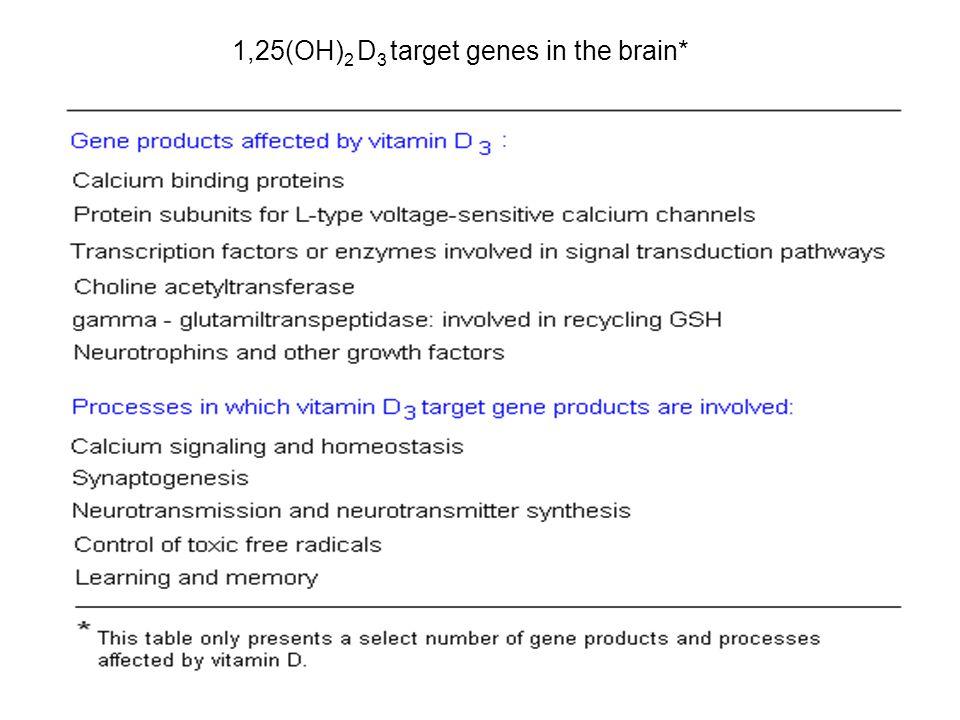 1,25(OH)2 D3 target genes in the brain*