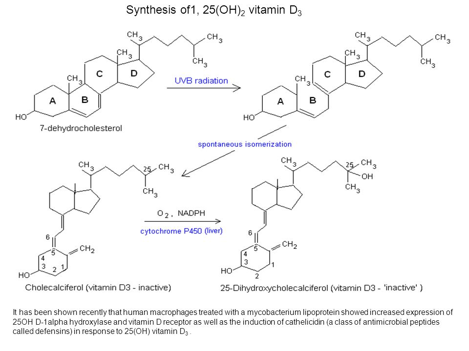 Synthesis of1, 25(OH)2 vitamin D3