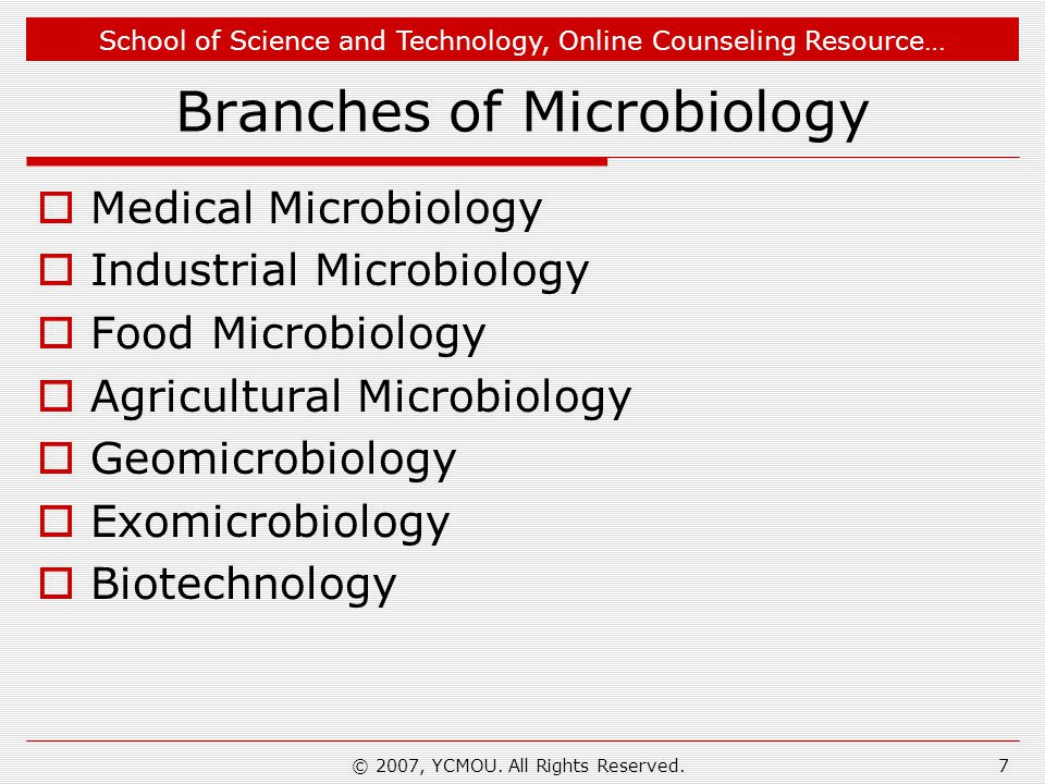 Branches of Microbiology