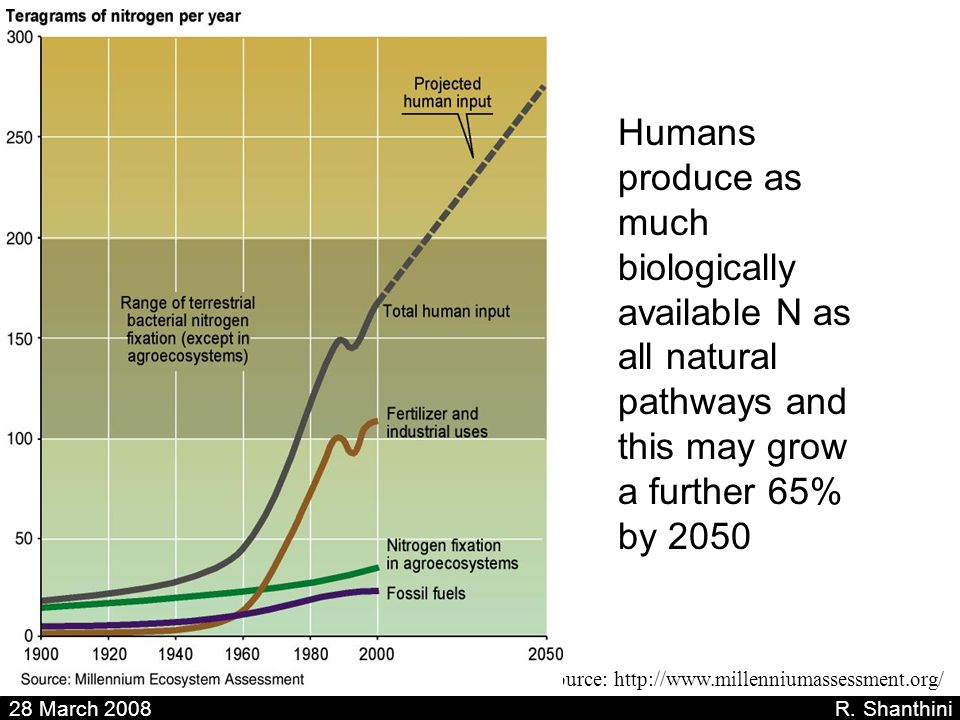 Humans produce as much biologically available N as all natural pathways and this may grow a further 65% by 2050