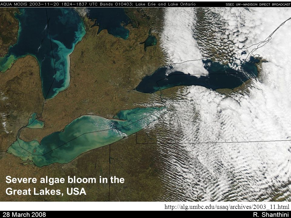 Severe algae bloom in the Great Lakes, USA