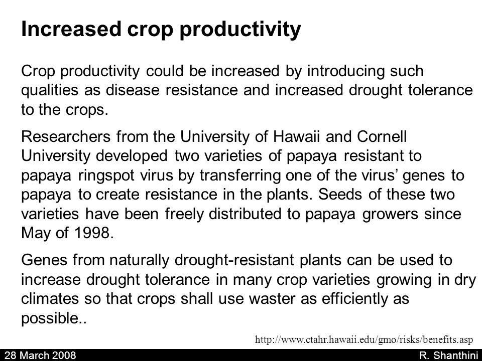 Increased crop productivity