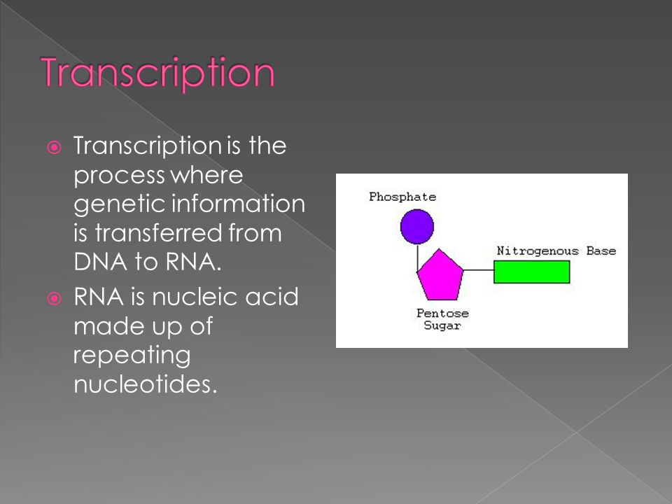 Transcription Transcription is the process where genetic information is transferred from DNA to RNA.