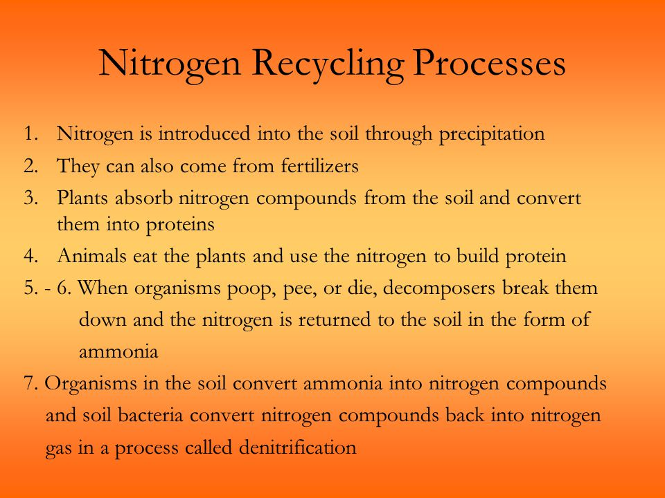 Nitrogen Recycling Processes
