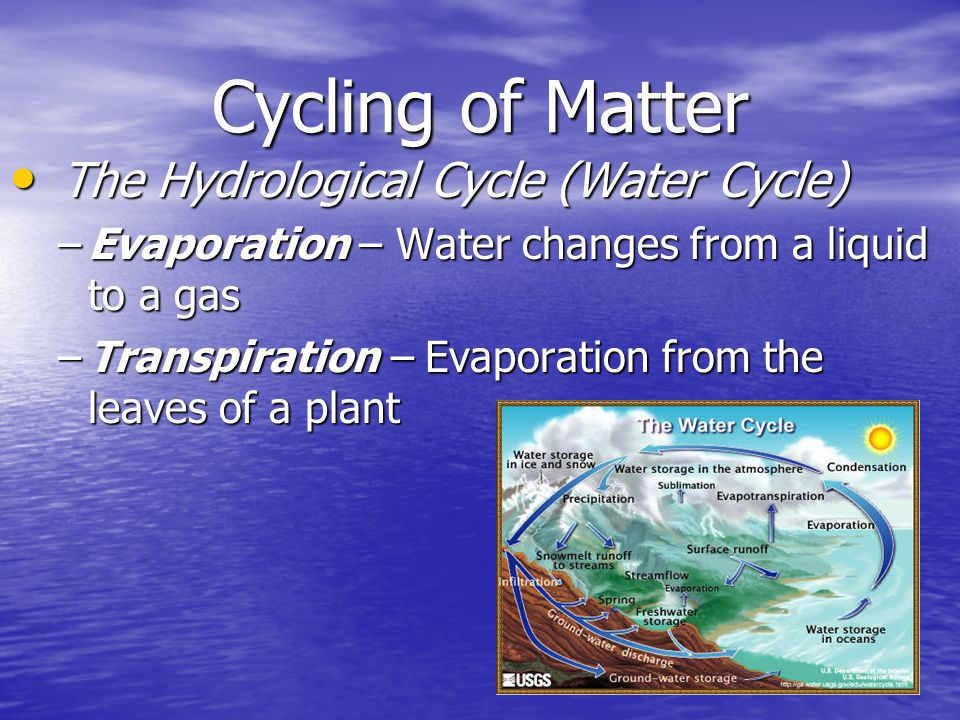 Cycling of Matter The Hydrological Cycle (Water Cycle)