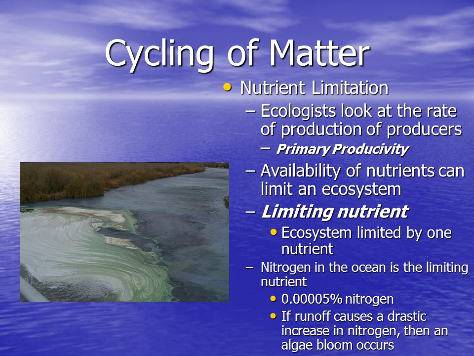 Cycling of Matter Nutrient Limitation