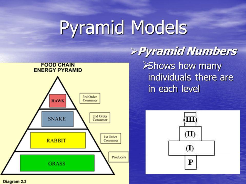 Pyramid Models Pyramid Numbers