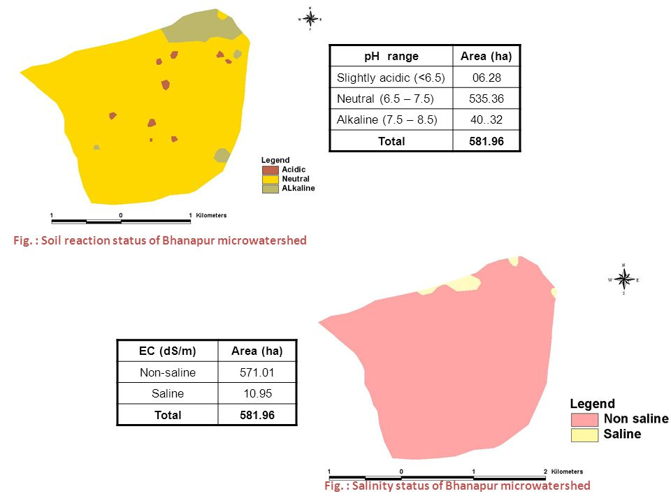 Fig. : Soil reaction status of Bhanapur microwatershed